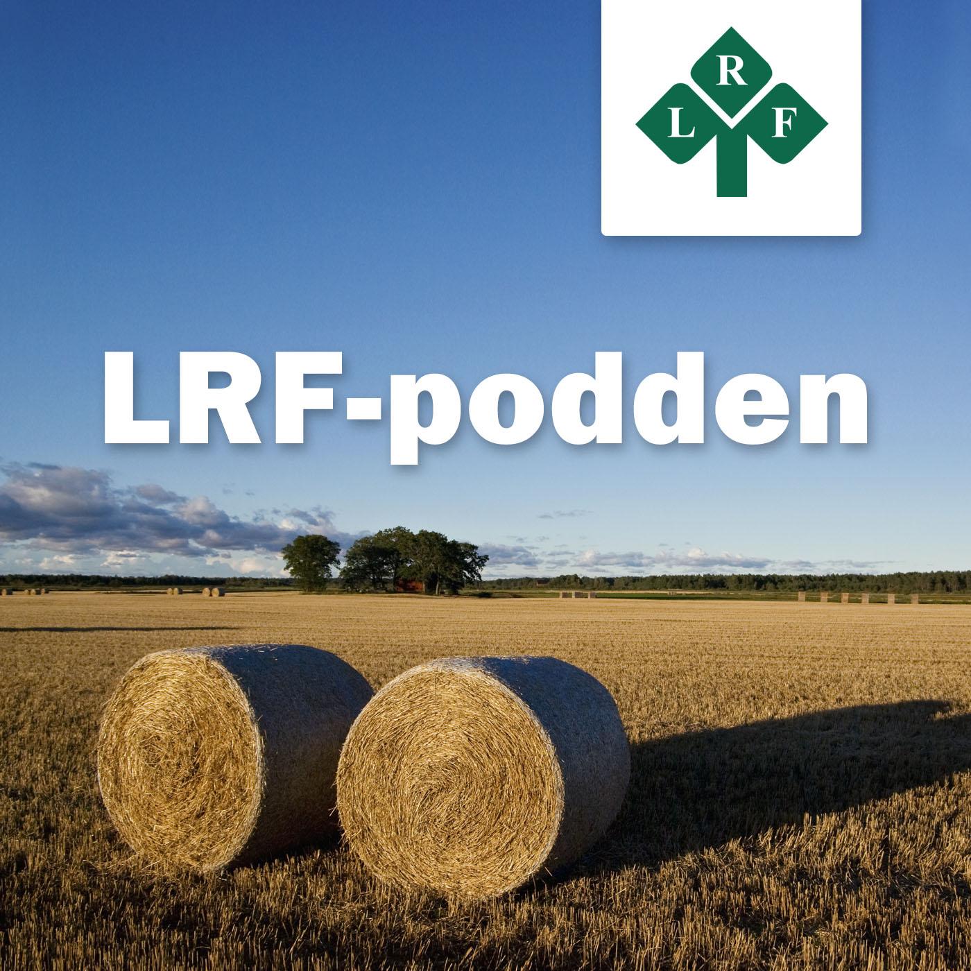 LRF Podden